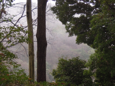 f:id:noronoyama:20120121145734j:image
