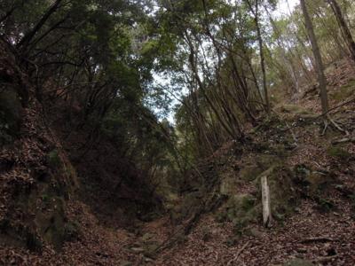 f:id:noronoyama:20120128154254j:image