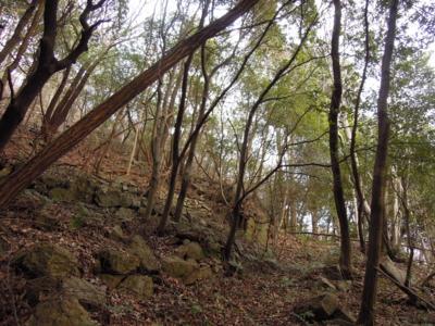 f:id:noronoyama:20120128161026j:image