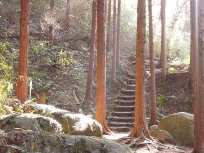 f:id:noronoyama:20120320083619j:image