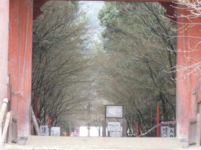 f:id:noronoyama:20120323115818j:image