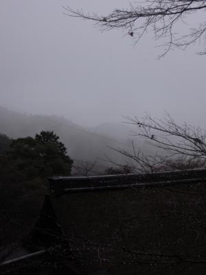 f:id:noronoyama:20120324103949j:image