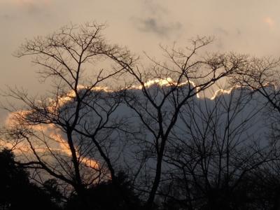 f:id:noronoyama:20120324172736j:image