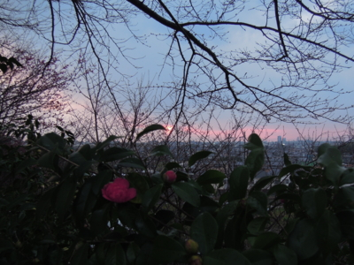 f:id:noronoyama:20120324180313j:image