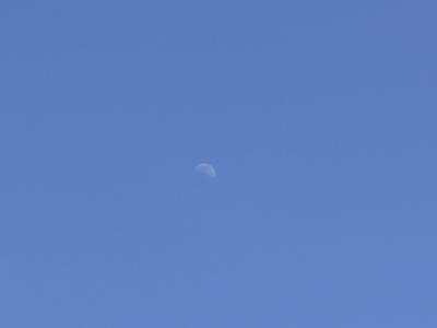 f:id:noronoyama:20120331143537j:image
