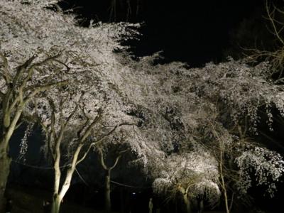 f:id:noronoyama:20120408194132j:image
