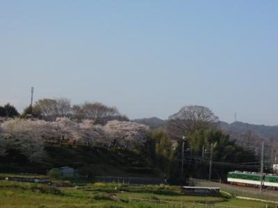 f:id:noronoyama:20120412073042j:image