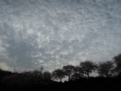 f:id:noronoyama:20120413072412j:image