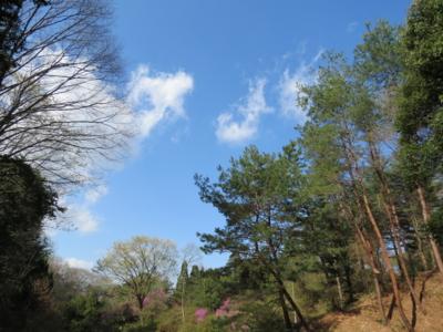 f:id:noronoyama:20120414152000j:image