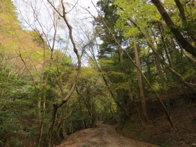 f:id:noronoyama:20120415094930j:image