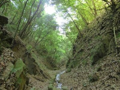 f:id:noronoyama:20120505075132j:image