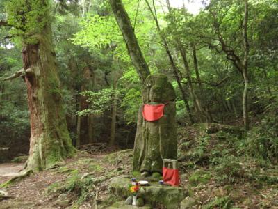 f:id:noronoyama:20120506092445j:image