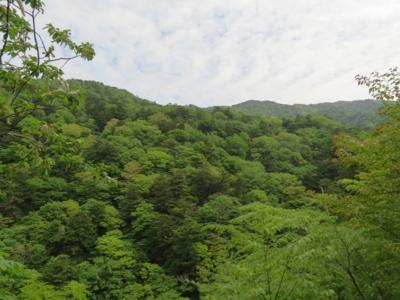 f:id:noronoyama:20120526093645j:image