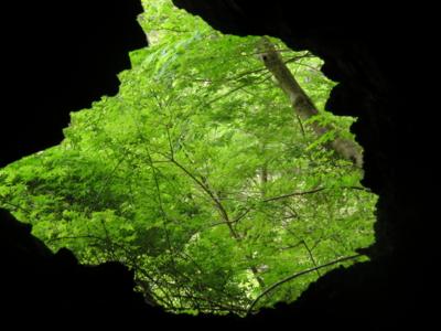 f:id:noronoyama:20120526100110j:image