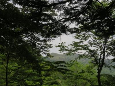 f:id:noronoyama:20120526132450j:image