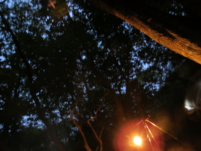 f:id:noronoyama:20120526192856j:image