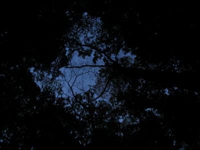 f:id:noronoyama:20120527043011j:image