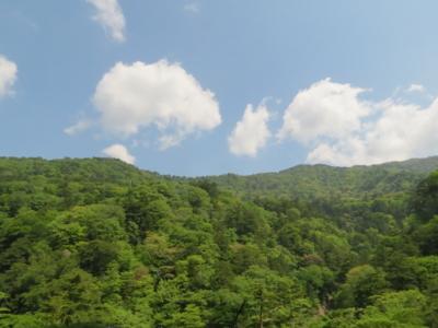 f:id:noronoyama:20120527101449j:image