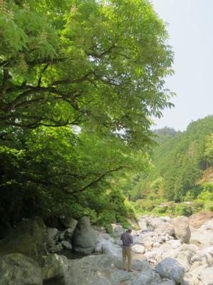 f:id:noronoyama:20120527111616j:image