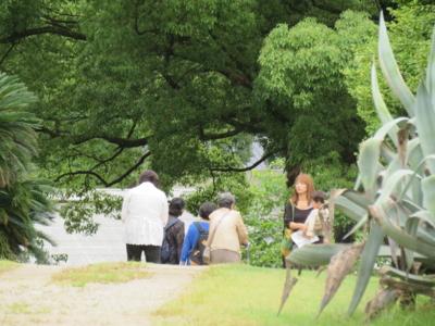 f:id:noronoyama:20120609120707j:image
