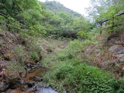 f:id:noronoyama:20120609153313j:image