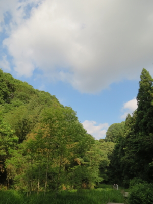 f:id:noronoyama:20120610163422j:image