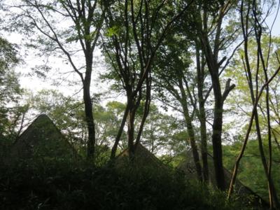 f:id:noronoyama:20120610171842j:image