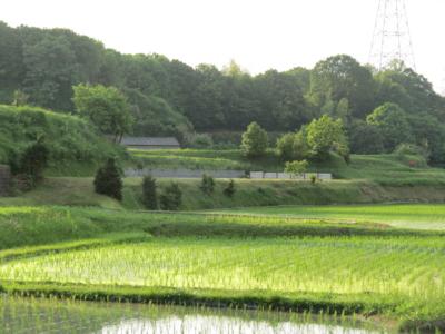f:id:noronoyama:20120610174312j:image