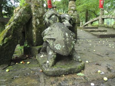 f:id:noronoyama:20120701055735j:image