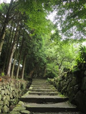 f:id:noronoyama:20120701112503j:image