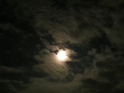 f:id:noronoyama:20120703234630j:image