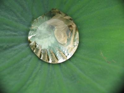 f:id:noronoyama:20120705150312j:image