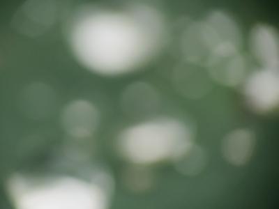f:id:noronoyama:20120705150813j:image
