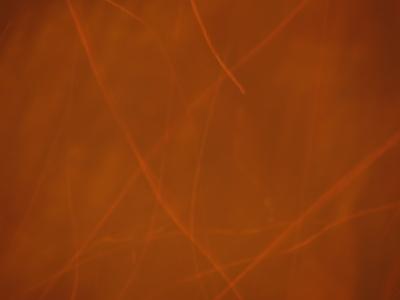 f:id:noronoyama:20120707204050j:image