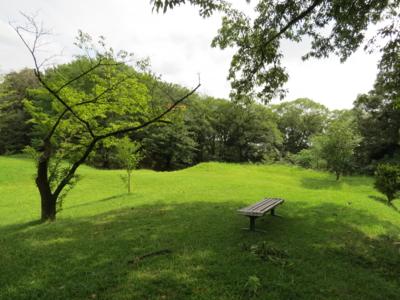 f:id:noronoyama:20120714145948j:image