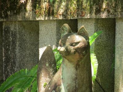 f:id:noronoyama:20120716124920j:image