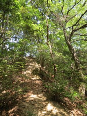 f:id:noronoyama:20120716133602j:image