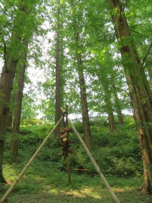 f:id:noronoyama:20120728122715j:image