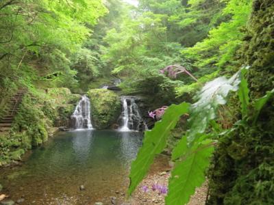 f:id:noronoyama:20120805151920j:image