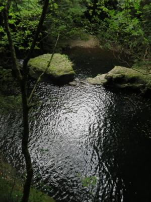 f:id:noronoyama:20120805161604j:image