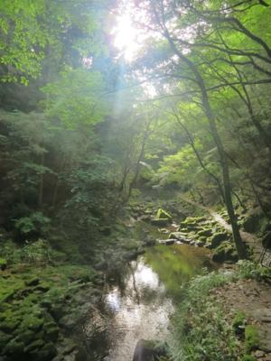 f:id:noronoyama:20120805163133j:image