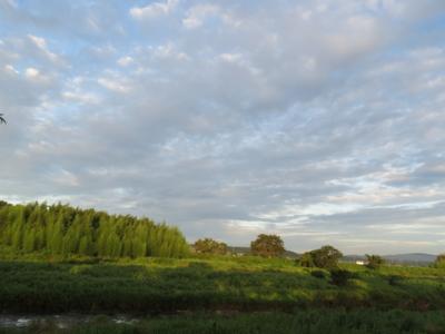 f:id:noronoyama:20120806054005j:image