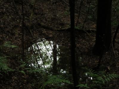 f:id:noronoyama:20120814160204j:image