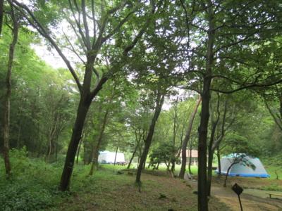f:id:noronoyama:20120814163103j:image