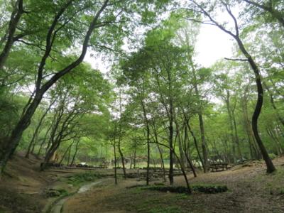 f:id:noronoyama:20120814164737j:image