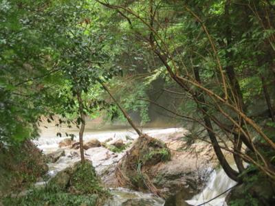 f:id:noronoyama:20120814175102j:image