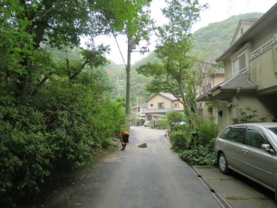 f:id:noronoyama:20120814181024j:image