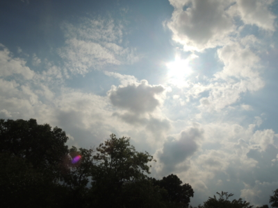 f:id:noronoyama:20120818142546j:image