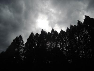 f:id:noronoyama:20120818150129j:image