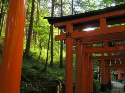 f:id:noronoyama:20120825073456j:image
